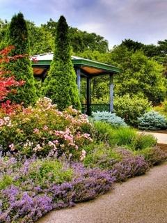 Spring Garden Mobile Wallpaper