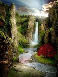 Nature Beauty Mobile Wallpaper