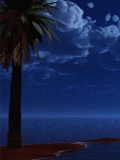 Night Sea Blue Mobile Wallpaper