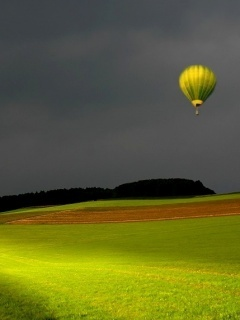 Green Field Balloon Mobile Wallpaper