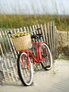 Cycle On Beach Mobile Wallpaper