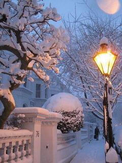 Winter Light Mobile Wallpaper
