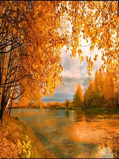 Autumn River Mobile Wallpaper