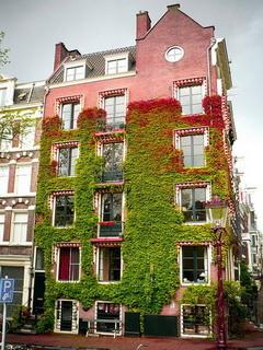 Amsterdam House Garden Mobile Wallpaper