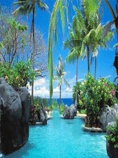 Beauty Blue Paradise Mobile Wallpaper