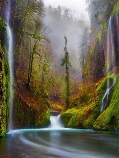 Beautiful Waterfalls View Mobile Wallpaper