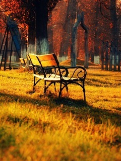 Autumn Bench Mobile Wallpaper