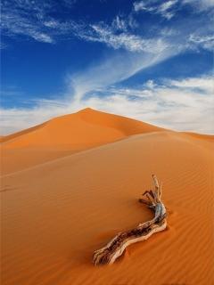 Sand Dunes Mobile Wallpaper