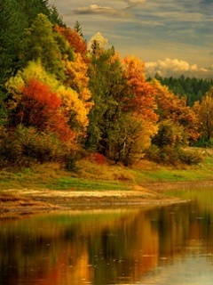 Autumn Lake Mobile Wallpaper