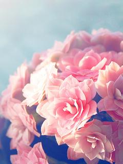 Pink Flowers Mobile Wallpaper