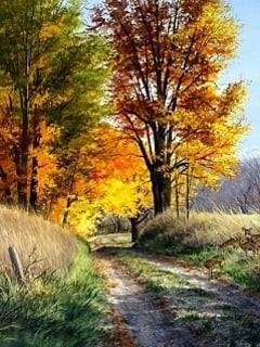 Roads Autumn Mobile Wallpaper