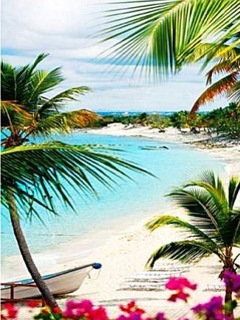Beautiful Beach Mobile Wallpaper