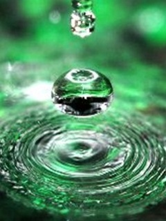 Green Drop Mobile Wallpaper