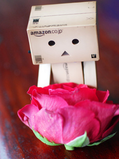 Danbo With Rose Mobile Wallpaper