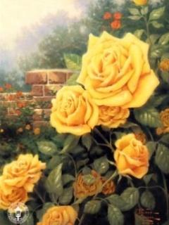 Yellow Roses Mobile Wallpaper