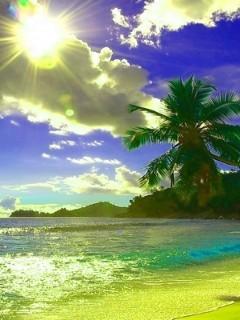 Sun Lights And Beach Mobile Wallpaper