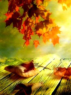 Autumn Season Mobile Wallpaper