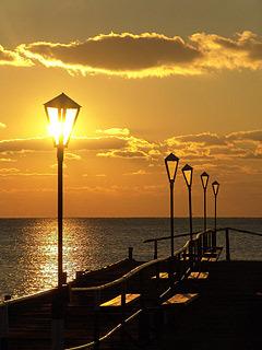 Sea Street Lamp Mobile Wallpaper