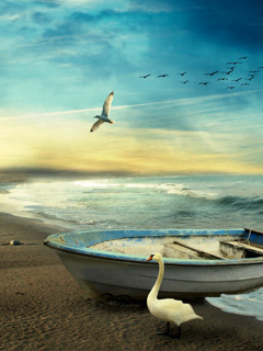 Boat And Birds Mobile Wallpaper