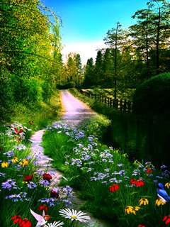 Nice Garden Nature Mobile Wallpaper