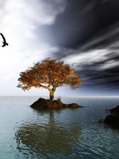 Tree On Sea Mobile Wallpaper