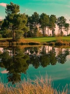 Lake Reflection Mobile Wallpaper