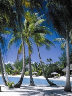 Resort Mobile Wallpaper