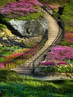 Garden Steps Mobile Wallpaper
