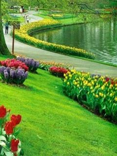 Beauty Garden Way Mobile Wallpaper