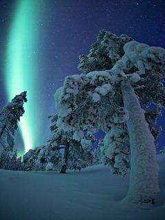 Aurora Borealis In Sodankyla Finland Mobile Wallpaper