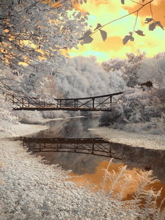 Winter Bridge Reflections Mobile Wallpaper