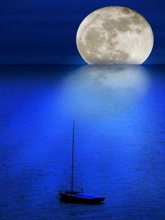 Blue Sea Mobile Wallpaper