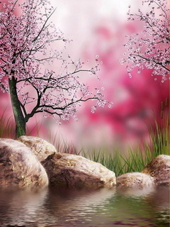 Spring Nature Mobile Wallpaper