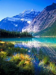 Mount Edith Cavell Canada Mobile Wallpaper