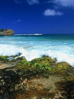 Nice Sea Hawaii Mobile Wallpaper