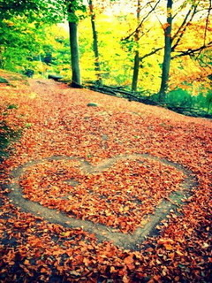Love Autumn Mobile Wallpaper
