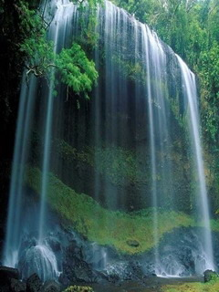 Beauty Falls Natures Mobile Wallpaper
