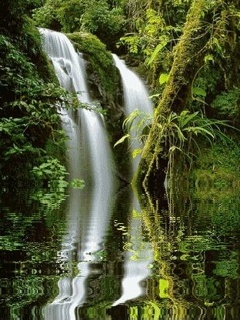 Waterfall Green Nature Mobile Wallpaper