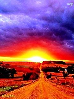 Road N Sunset Mobile Wallpaper