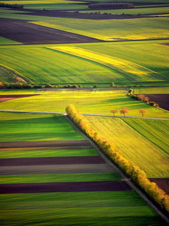 Spring Fields Boris Michalicek Mobile Wallpaper