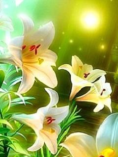 Lilies Mobile Wallpaper