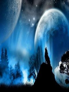 Night Wolf Mobile Wallpaper