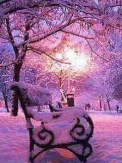 Purple Winter Mobile Wallpaper