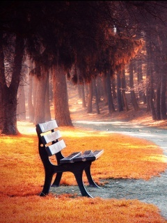 Alone Bench Mobile Wallpaper