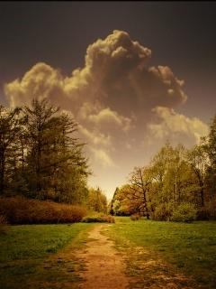 Path To Heaven Mobile Wallpaper