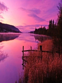 Dawn Purple Sky Mobile Wallpaper