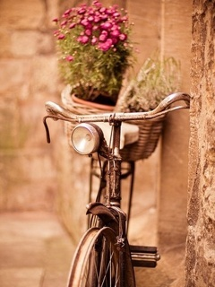 Bicycle Mobile Wallpaper