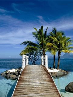 Tahiti Dock Mobile Wallpaper
