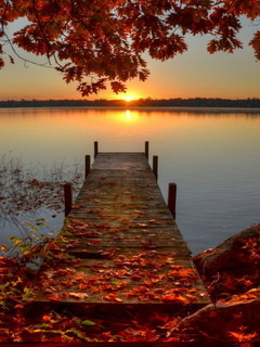 Autumn Sunrise Dock Mobile Wallpaper