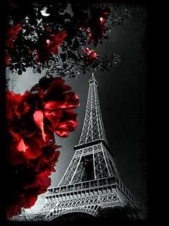 Night  Paris View Mobile Wallpaper
